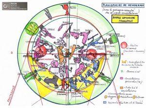 Représentation aux équinoxes