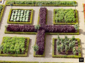 Croix cardinale d'un secteur du potager